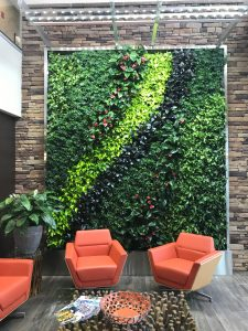 Living Wall Plantscapes for Businesses in North Carolina